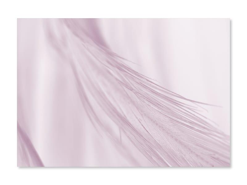Tablou Art Print fotografii Soft Feather