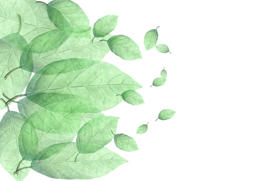 Foto Tapet flying leaves