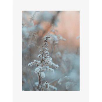 Tablou Fine Art Frozen Flower