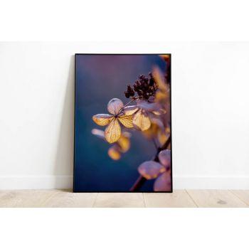 Tabloul Fine Art Hydrangea