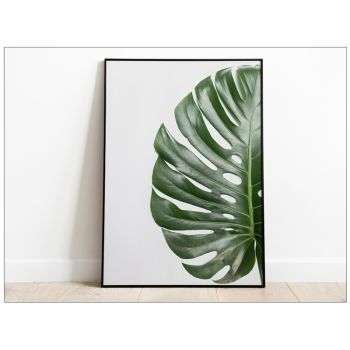 Tablou Fine Art Monstera frunze de palmier