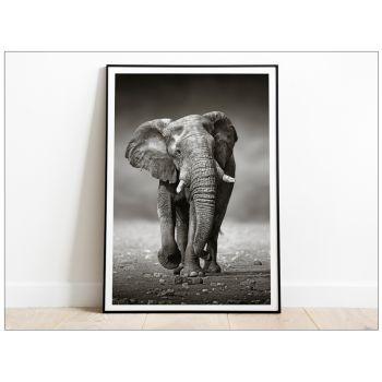 Tablou art Elephant