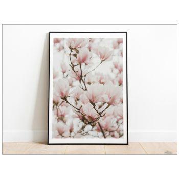 Tabloul Fine Art Magnolia