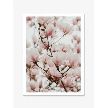 Tablou Fine Art magnolia